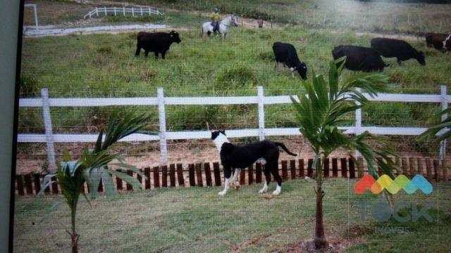 Sítio Fazenda a 30km de Salvador - Foto 6