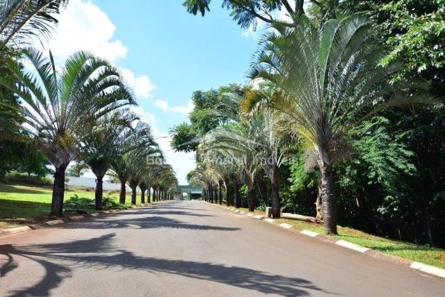 Terreno à venda em Jardim fortaleza, Paulínia cod:TE009855 - Foto 11