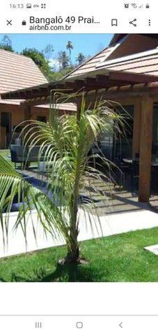 MM. casa quitada Eco Risort  Praia dos Carneiros PE.  What * - Foto 6