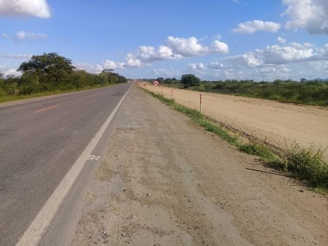Excelente área de terra com 19.600 metros quadrados na BR 116 Norte - Foto 15