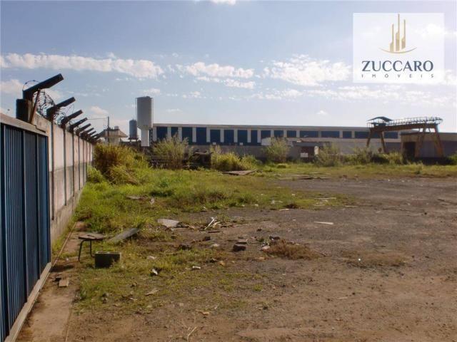 Terreno industrial para locação, vila nova bonsucesso, guarulhos - te0408. - Foto 3