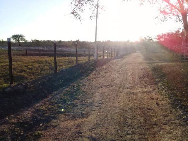 Lindíssima Fazendinha na região rural de Antonio Cardoso Bahia - Foto 7