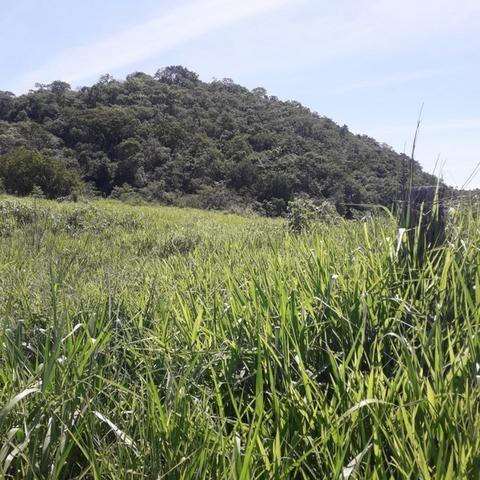 Fazenda Sítio Chácara Lote Terreno - Foto 4