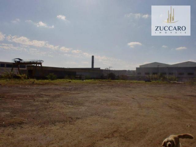 Terreno industrial para locação, vila nova bonsucesso, guarulhos - te0408.