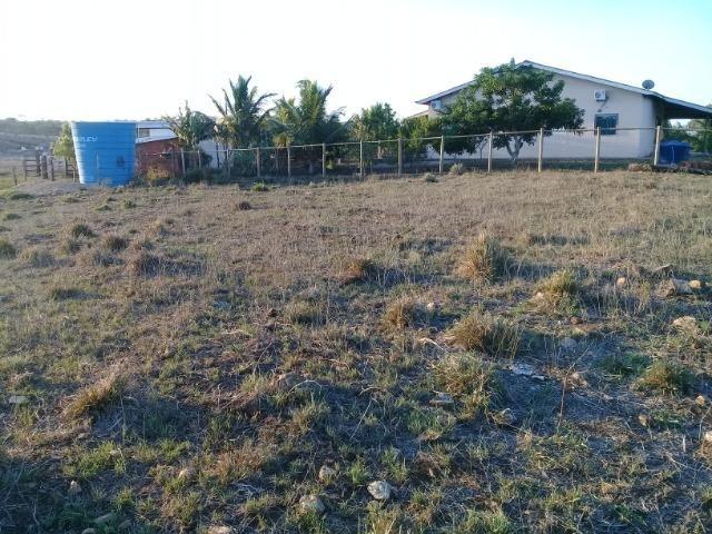 Lindíssima Fazendinha na região rural de Antonio Cardoso Bahia - Foto 9