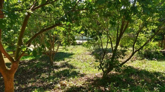 Sítio 4 Hectares - Casa de 3 Quartos - 5 Açudes - Galpão - São Sebastião - Treze de Maio - Foto 20