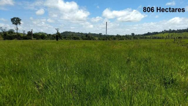 Fazenda no município de Alto Paraíso com 806 hectares