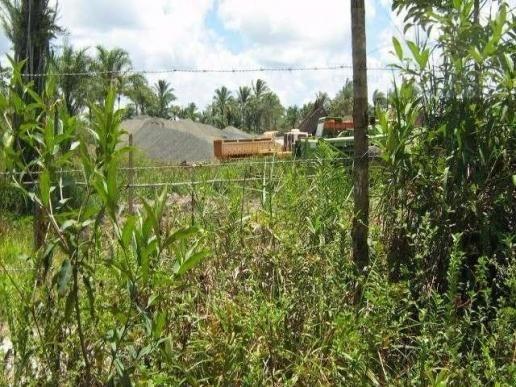 Fazenda para venda em camamu, tapuía - Foto 16