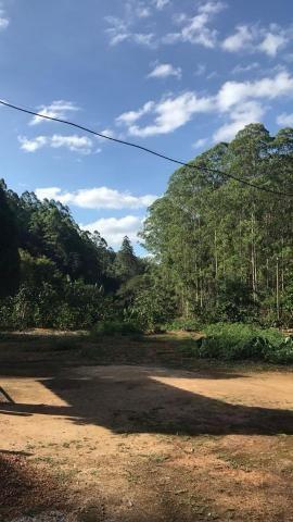 Fazenda com 15 Hectares (150 mil metros) em João Neiva - Foto 8