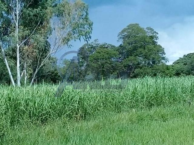 Fazenda/com um projeto que da valorização as terras - Foto 20
