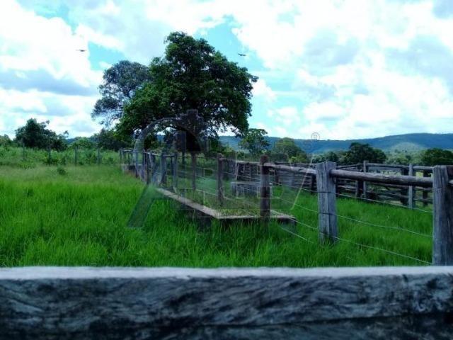 Fazenda/com um projeto que da valorização as terras - Foto 2