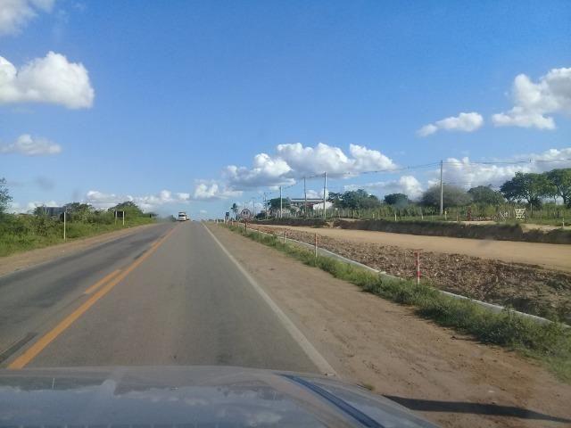 Excelente área de terra com 19.600 metros quadrados na BR 116 Norte - Foto 6