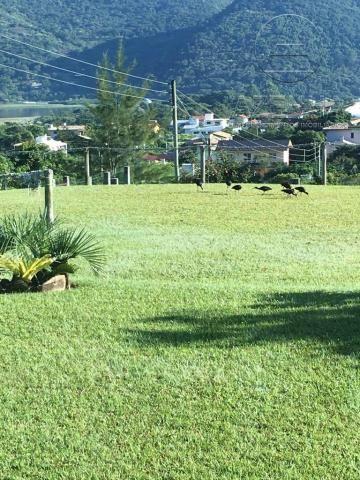 Casa à venda com 2 dormitórios em Areias do macacú, Garopaba cod:3338 - Foto 16