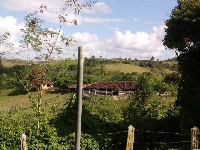 Fazenda Ipiaú vale do Gongoji de 1.150ha com estrutura e sede. Oportunidade - Foto 12