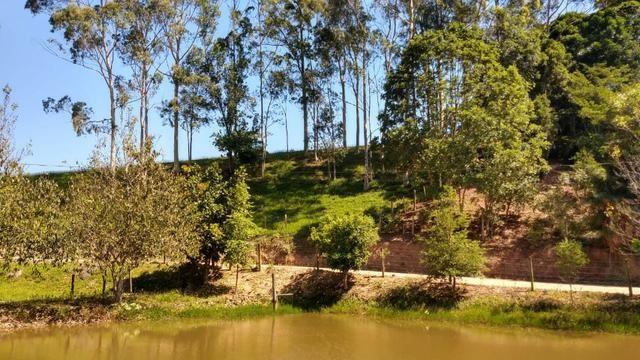 Sítio 4 Hectares - Casa de 3 Quartos - 5 Açudes - Galpão - São Sebastião - Treze de Maio - Foto 10