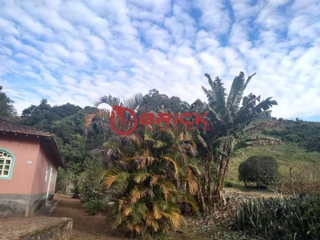 Excelente sítio com 2 casas de caseiro e com 207 mil m² de terreno em São José do Vale do  - Foto 8