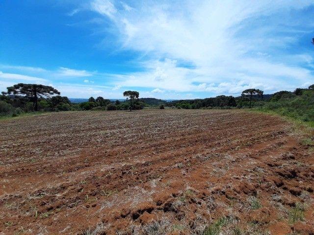 Terreno à venda em Urupema - Foto 8