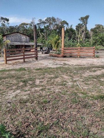 Vendo uma fazenda - Foto 10