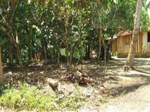 Fazenda para venda em camamu, tapuía - Foto 17