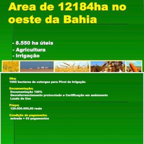 Fazenda na Bahia