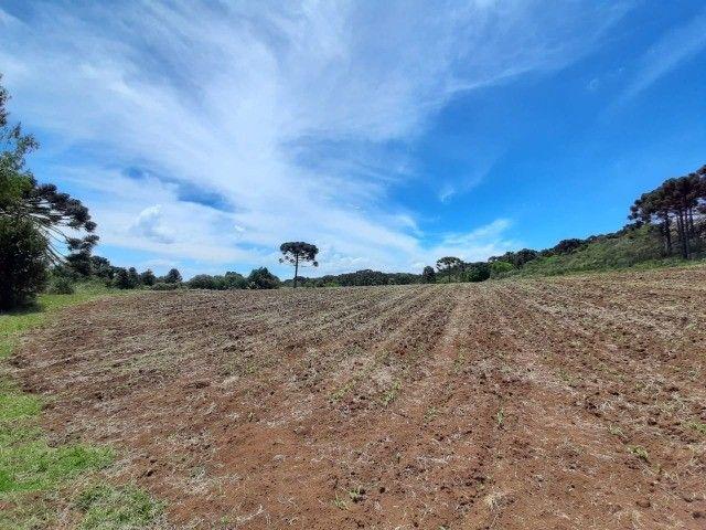 Terreno à venda em Urupema - Foto 4