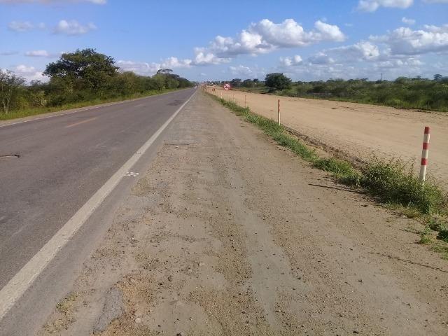 Excelente área de terra com 19.600 metros quadrados na BR 116 Norte - Foto 10