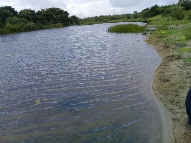 Excelente propriedade de 340 tarefas de terras margeando o rio Sacraiú - Foto 2