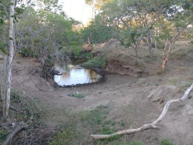 Lindíssima Fazendinha na região rural de Antonio Cardoso Bahia - Foto 4