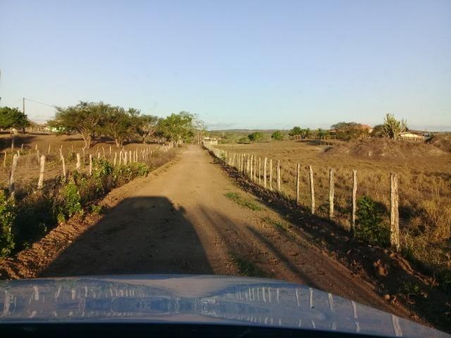 Lindíssima Fazendinha na região rural de Antonio Cardoso Bahia - Foto 8