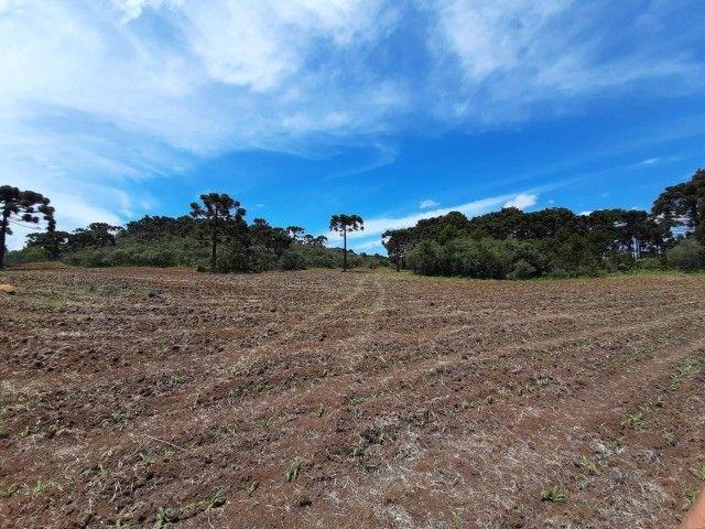 Terreno à venda em Urupema - Foto 7