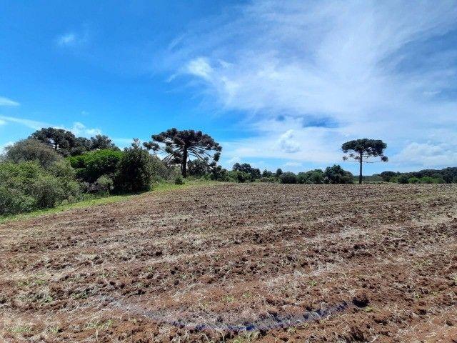 Terreno à venda em Urupema - Foto 5