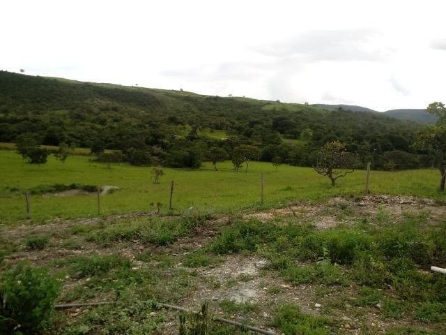 Fazenda 22 alqueires - Foto 6
