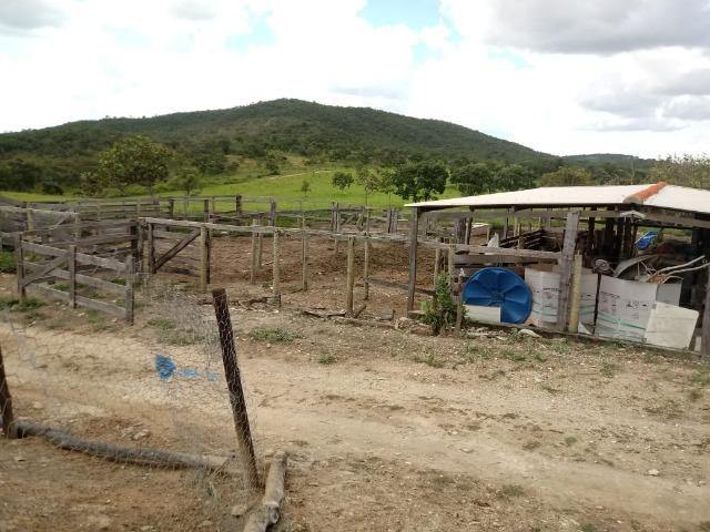 Fazenda 22 alqueires - Foto 15