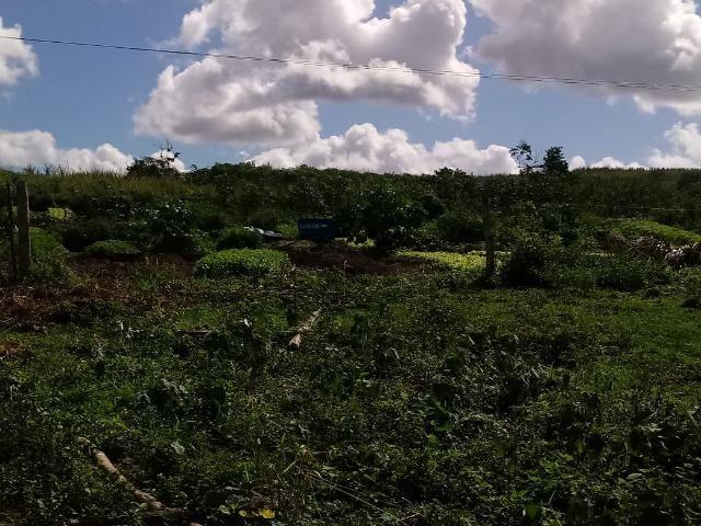 Fazenda Ipiaú vale do Gongoji de 1.150ha com estrutura e sede. Oportunidade - Foto 8