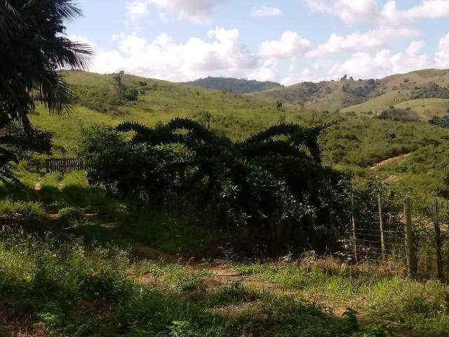 Fazenda Ipiaú vale do Gongoji de 1.150ha com estrutura e sede. Oportunidade - Foto 15
