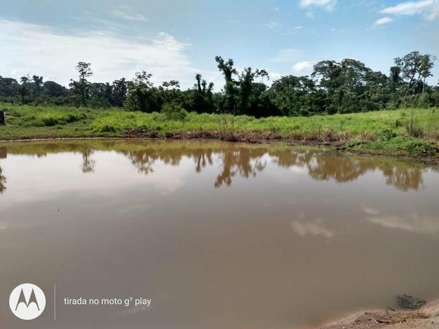 Colônia com 100 hequitare de terra por 160.000 - Foto 2