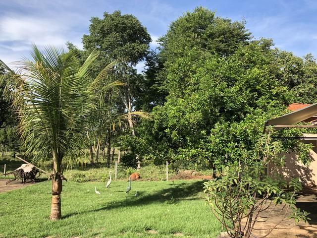Ótima chácara em Bela Vista de Goiás - Foto 18