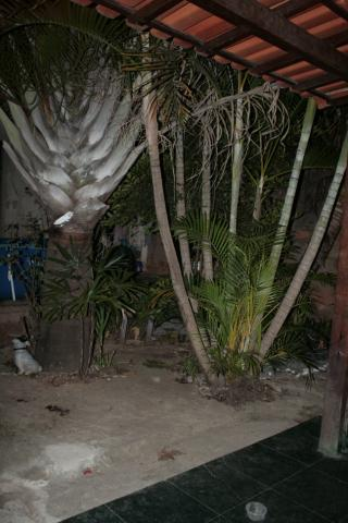 Casa 2 quartos à venda no bairro Mantiqueira /Pedra Branca - Foto 10