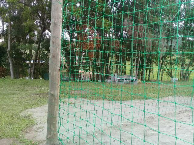 Lindo sitio Imaruí figueira grande - Foto 3