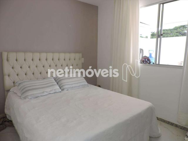 Loja comercial à venda com 3 dormitórios em Castelo, Belo horizonte cod:846349 - Foto 13