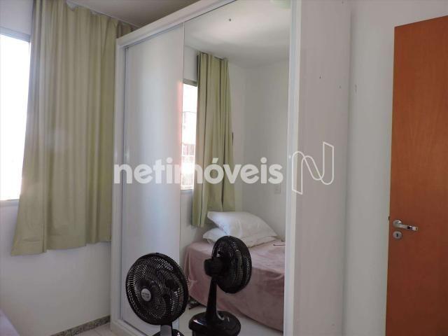 Loja comercial à venda com 3 dormitórios em Castelo, Belo horizonte cod:846349 - Foto 11