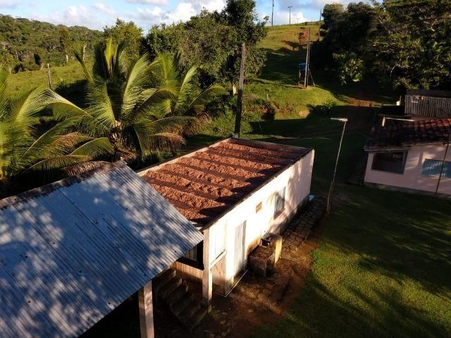 Fazenda Ilhéus Bahia/ Sul da Bahia - Foto 8