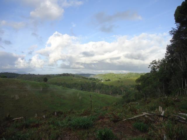 Fazenda Ilhéus Bahia/ Sul da Bahia - Foto 13