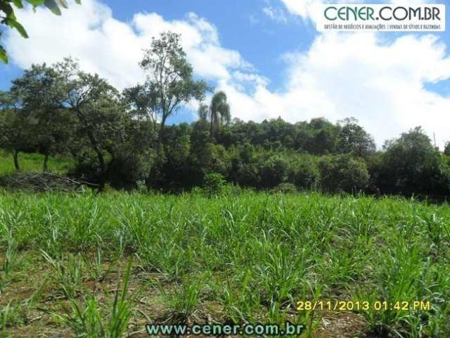 1426/Bela fazenda de 35 ha pertinho de Ouro Branco e com ótima estrutura e belo lago - Foto 15