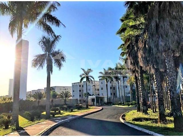 Apartamento à venda com 2 dormitórios em Gávea sul, Uberlândia cod:27499