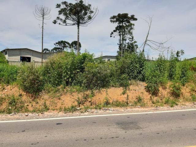 Área Localizada a apenas 120 metros da Rodovia do Xisto/Araucária - Foto 9