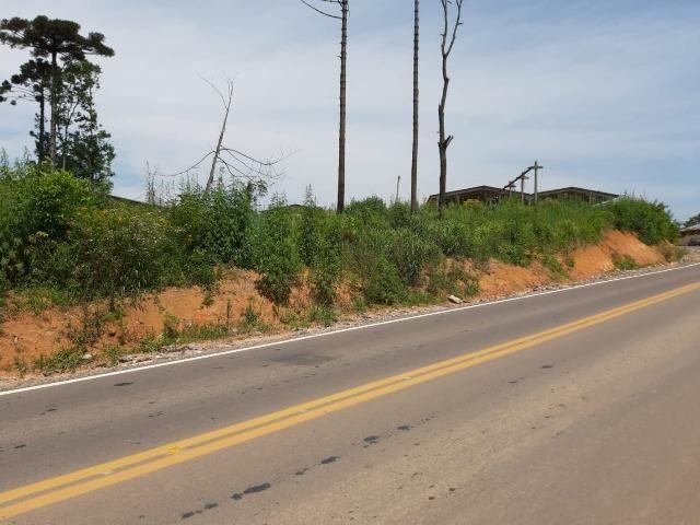 Área Localizada a apenas 120 metros da Rodovia do Xisto/Araucária - Foto 3