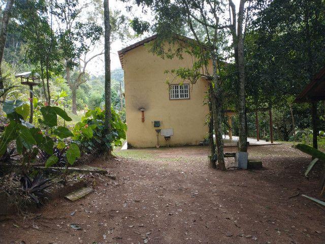 Sítio domingo Martins 38 mil metros quadrados - Foto 6