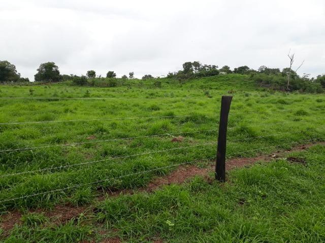 Fazenda com 160 aqls em Formoso do Araguaia - TO c/ confinamento e ótima infra!! - Foto 17
