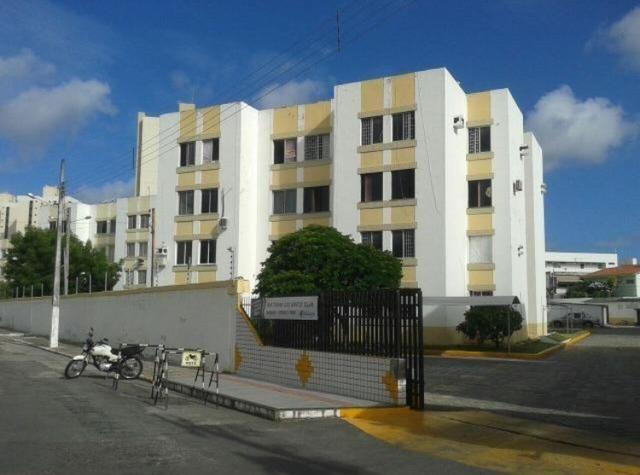 Jardim das Palmeiras no Bairro Luzia